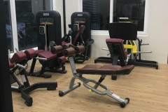 the_fitness_house (2)